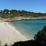 Ferienwohnung Mallorca MeerFr Hling-150x150 in Mallorca